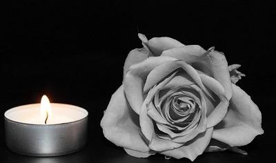 rose-1273740_640